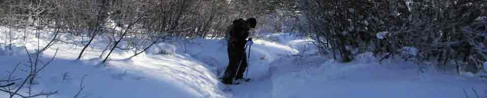 snowshoeing photo